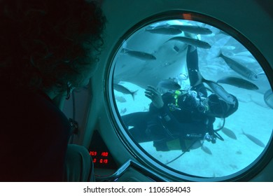 Tenerife, Canary islands - march 23, 2013: Tourist observes through a window in a mini submarine, a diver in the southern waters of the island