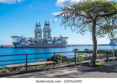 Tenerife, Canary islands - November 18, 2018: Tree and promenade of the city of Santa Cruz, with an oil platform on the dock as a background