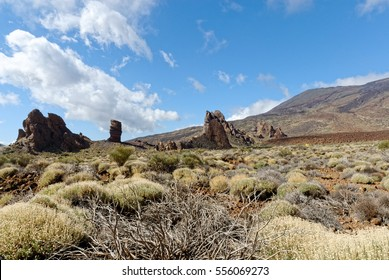 tenerife lanscapes canary islands