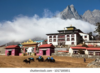 Tengboche Monastery, the best monastery in Khumbu valley and yaks, trek to Everest base camp, Sagarmatha national park, Solukhumbu, Nepal Himalayas