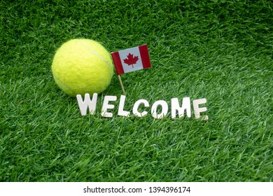Tennis ball with flag of America and welcome are on green grass.