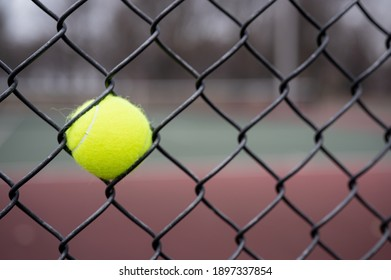 tennis ball stuck on a fence