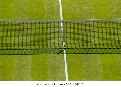 Tennis lawn Court, net grass and baseline