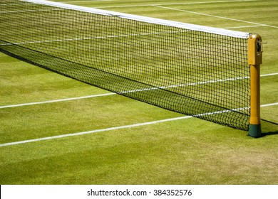 Tennis net and court