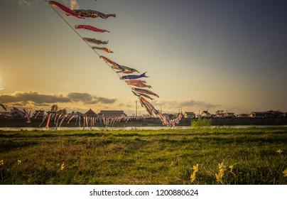Tenshochi Park,Kitakami,Iwate,Tohoku,Japan on April 26,2018:Carp streamers (or koinobori) over the Kitakami River blowing in strong wind during sunset