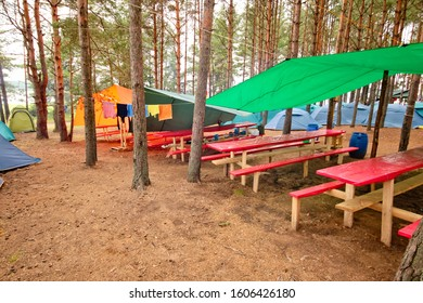 Tent camp in the forest.