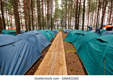 Tent camp in the forest near the lake Seliger. Wooden path.