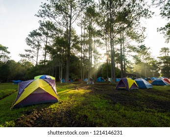 Tent camping in sunlight on the morning at Phu Kradueng national park, Loei Thailand.
