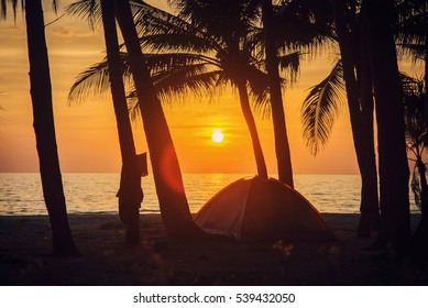 Tent on the beach at sunset. Coconut tree.