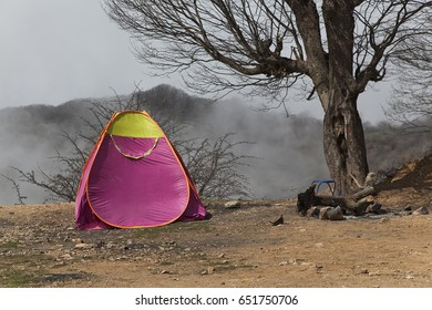 Tents for camping in the forest, Of the Abr Jungle of Shahrood Iran