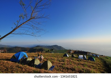 Tents at viewpoint below tree with sunrise