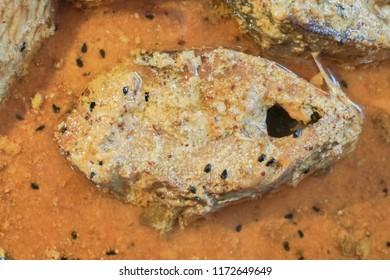 Fish Spicy Images, Stock Photos & Vectors | Shutterstock