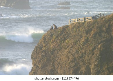 Tepona Point and visitors, Luffenholtz Beach County Park, Humboldt County, California, USA