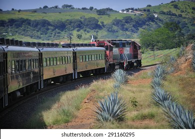Tequila, Jalisco, Mexico  October. 6. 2013: Jose Cuervo Express, passenger train for tequila tourism run by Jose Cuervo, the leading company of Tequila, town of Tequila, Jalisco, Mexico