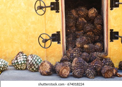 Tequila Production Pina Husks Agave