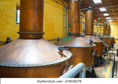Tequila Production Process in Factory