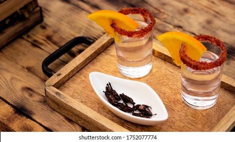 Tequila shot chapulines mezcal shot drink
