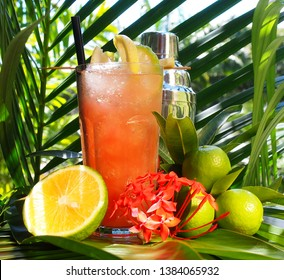 Tequila Sunrise Cocktail on tropical Background