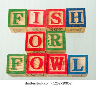 The term fish or fowl visually displayed on a white background using colorful wooden blocks image in landscape format