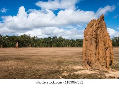 Termite mound in Australian Outback