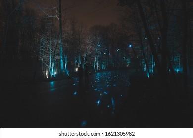 Terra Lumina night laser light beam show in Toronto Zoo forest