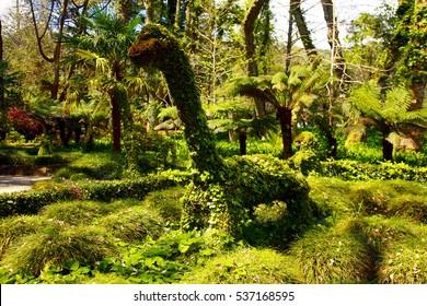 Terra Nostra gardens, Sao Miguel, Azores islands