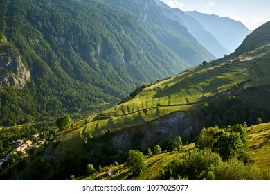 Terrace farming in the Romanche Valley in summer. Le Chazelet, Ecrins National Park, Hautes-Alpes, French Alps, France