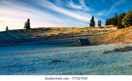 terraced field with hoarfrost at a wood house in a  rural landscape