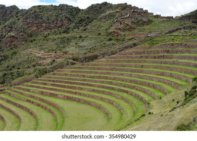 Terraced fields in the Inca archeological area of Pisac, Peru. The Inca constructed agricultural terraces on the steep hillside, which are still in use today.