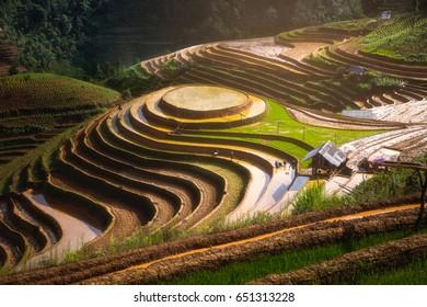 Terraced fields Water Season, Mu Cang Chai district, Yen Bai province, Vietnam