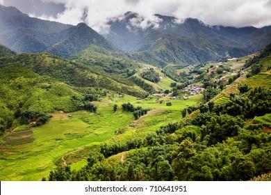 terraced green rice fields around Sa Pa, Vietnam