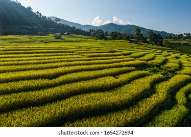 Terraced paddy fields and roof houses over the hills