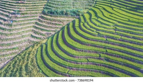 withthe terraced rice fieldsthailand