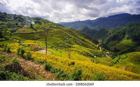 Terraced rice field with mountains at summer in Mai Chau Township, Northern Vietnam.