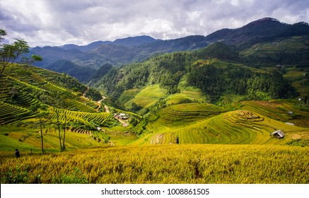 Terraced rice field on mountains in Mai Chau Township, Northern Vietnam.