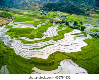 Terraced rice field in water season from drone in Mu Cang Chai, Vietnam.