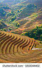Terraced rice fields in Mu Cang Chai (Yen Bai Province, Vietnam) before the farmers doing the rice sowing.