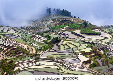 Terraced rice fields in water season of Hani ethnic people in Yunnan province, China.