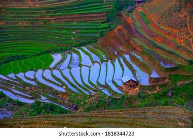 The terraced rice fields were being watered. Photo was taken in Yen Bai Province, Northwest Vietnam.