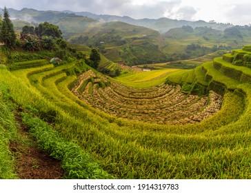 Terraced rice paddy field landscape of Mu Cang Chai, Yenbai, Vietnam