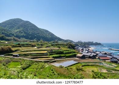 Terraced rice-fields of Sodeshi, Kyoto, Japan