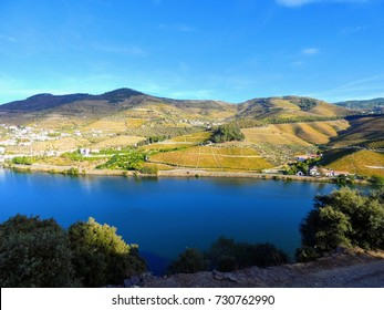 Terraced vineyards form the hillsides of Portugal's Douro River valley, classified World Heritage Site by UNESCO