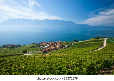 Terraced vineyards of Lavaux at Lake Geneva