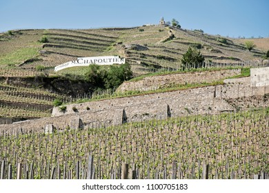 Terraced vineyards lead up the hill behind the town of Tain L'Hermitage in the Rhone Valley towards the small chapel at the top of the hill where the namesake hermit monk lived and prayed.