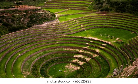 Terraces of cultivation in the Sacred Valley of the Incas, Peru.