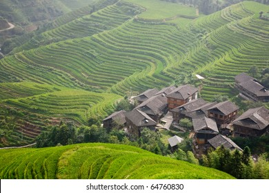 terraces and village