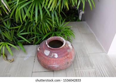 Terracotta jar next to slender lady palm plants