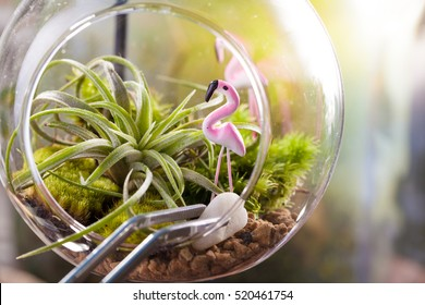 A terrarium garden scene in glass ball shape with Tillandsia, pebbles and flamingo toy inside and stainless forceps to decorate
