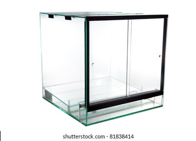 terrarium, a glass vivarium for keeping exotic and tropical pet animals such as lizards snakes and frogs animal tank