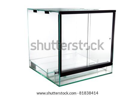 Terrarium Glass Vivarium Keeping Exotic Tropical Stock Photo Edit